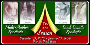 Tour Banner - Tis the Season Bundle