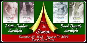 Tour Banner - Tis the Season Bundle