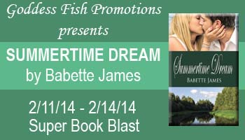 SBB_Summertime_Dream_Banner_copy