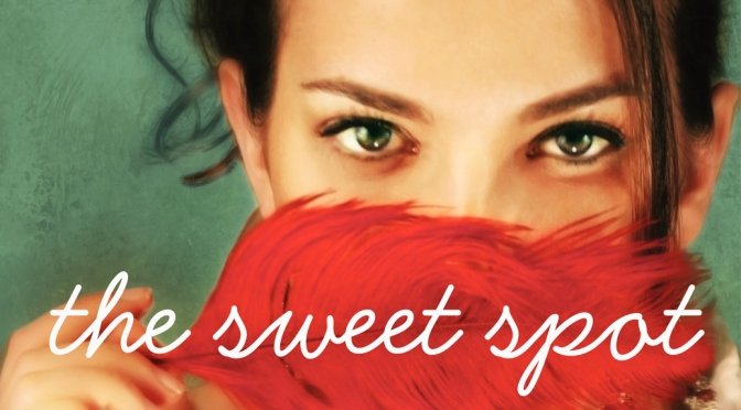 Excerpt & Giveaway: THE SWEET SPOT by Stephanie Evanovich