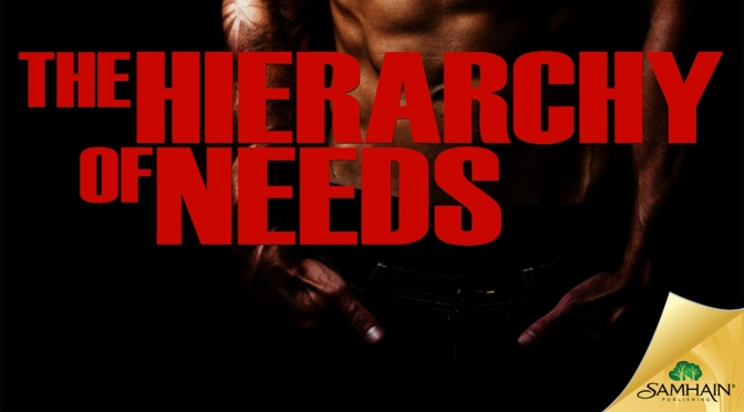 Cover Reveal: THE HIERARCHY OF NEEDS by Rebecca Grace Allen